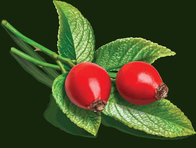 Herbs 12 - Ellia Natural Cosmetics - Cyprus Europe