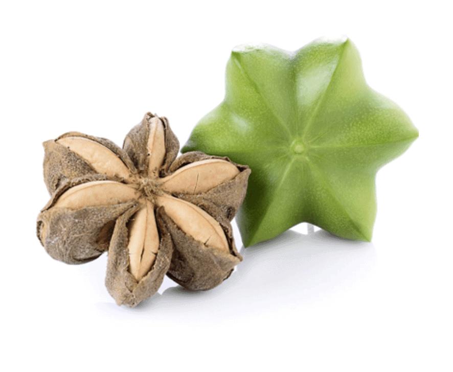 Herbs 40 - Ellia Natural Cosmetics - Cyprus Europe