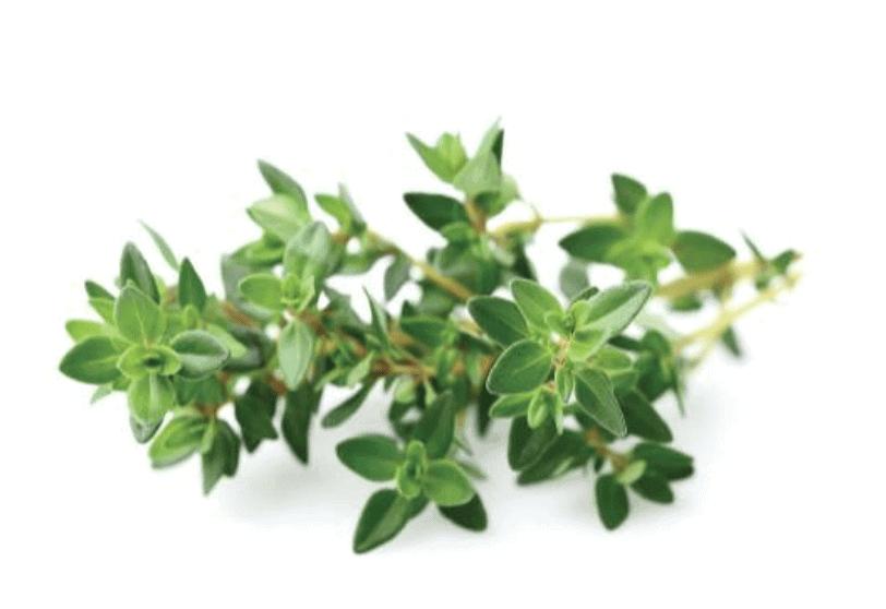 Herbs 43 - Ellia Natural Cosmetics - Cyprus Europe
